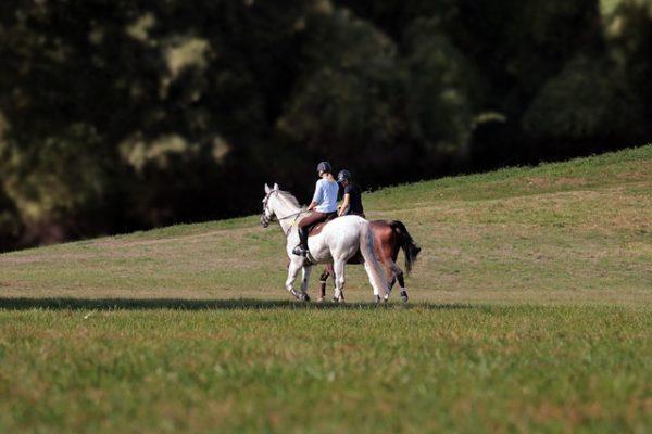 Les bienfaits de l'équitation sur votre corps et votre santé