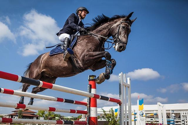 cheval et cavalier réalisant un saut d'obstacles