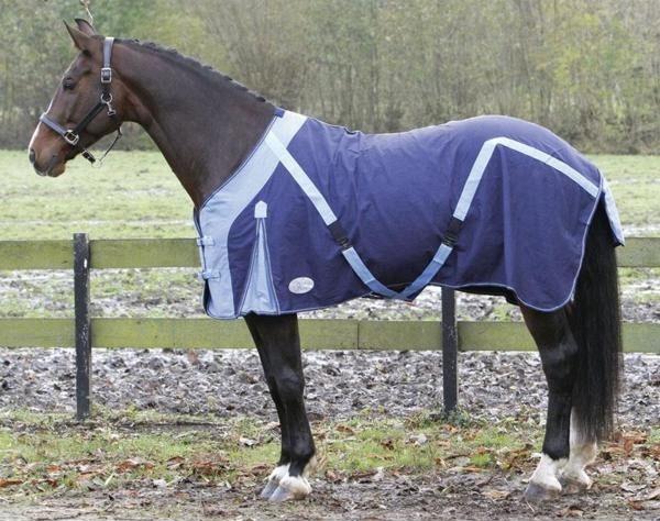 chemise cheval